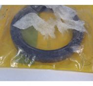 crankshaft seal 2880422